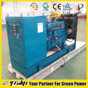 20-500kw aprono il tipo generatore di CNG/Gas