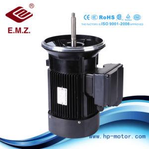 스테인리스 펌프 긴 샤프트 AC 효율성 전동기를 위한 특별한 모터