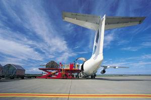 中国からの世界的にへの安い海貨物か航空貨物
