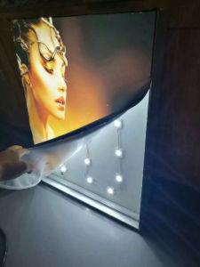 Il modulo impermeabile della lampadina LED del CREE di Alto-Luminosità 3W con 5 anni di garanzia per Lightbox/LED firma l'illuminazione