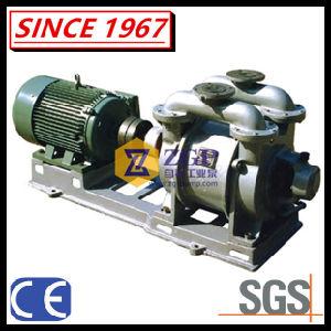 Anel de Água líquida horizontal da bomba de vácuo de titânio, IC, CS, SS304, SS316, 33316L