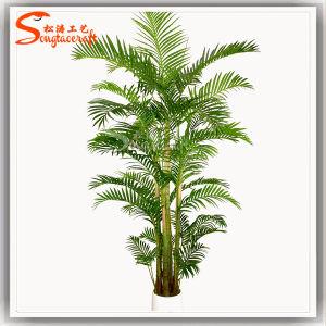 Matéria plástica artificial Ombre Kwai Bonsai envasadas de Palmeira