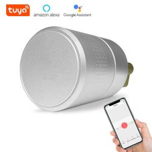 La entrada sin llave electrónica Airbnk Euro cilindro de cerradura inteligente Bluetooth funciona con Alexa Ttlock Tuya Zigbee la cerradura de puerta inteligente Digital