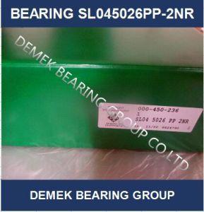 Двухрядный полного завершения цилиндрических роликовых подшипников SL045026 PP-2nr