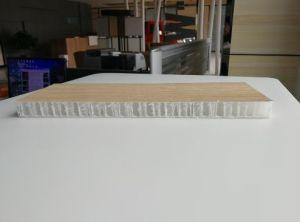 Comité van de Honingraat van de Sandwich van Cfrt pp het Thermoplastische voor het Lichaam van de Vrachtwagen