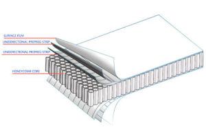 De Ononderbroken Glasvezel van pp versterkte Thermoplastisch Kabinet