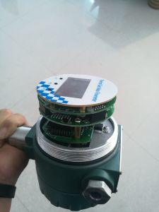 Flussometro Rotativo-Ultrasonico della turbina del Massa-Metallo Tester-Termico Vortice-Elettromagnetico di flusso
