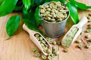 10: 1 Auszug-Kinetik, Chlorogensäure, grüner Kaffee-Auszug
