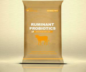 Custom Design Sheep Goat Ruminant Probiotics Yeast Animal feed of additive