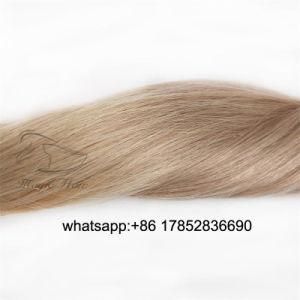 Kleur Balayage 18/613 van het Haar van Remy van de Band van de Uitbreidingen Pu van het menselijke Haar de Volledige HoofdUitbreidingen van het Haar van het Haar Vrigin 50g 20PCS van de Huid Weft