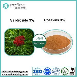 Estratto/Rosavin/Salidroside di Rhodiola Rosea