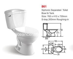861 Блок защиты и коммутации Siphonic туалет, состоящий из двух частей туалета, туалет, санитарные Ware