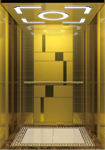 800kg acabamento espelhado elevador de passageiros com porta de aço inoxidável