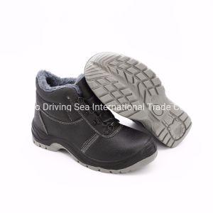 Провод фиолетового цвета ЭБУ системы впрыска с литыми единственной обувь /хлопок обувь/специальную обувь