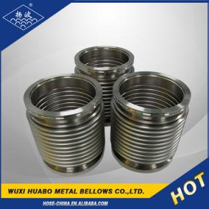 フランジの接続およびステンレス鋼の物質的で適用範囲が広い管のうなり声