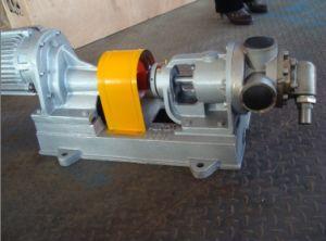 Nyp24 안전 밸브를 가진 내부 기어 펌프