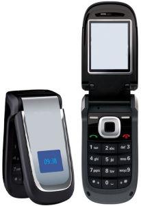 Telefono mobile bollato (2660)