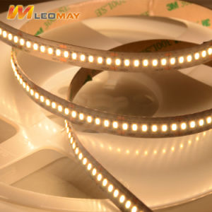 Alte strisce luminose della striscia SMD3014 240LEDs/M LED del LED
