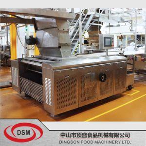 Dsm回転式朽ちビスケットの機械モデル: 259