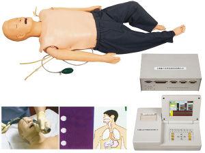 Xy-2300 Full-Functional maniquí de enfermería para la enseñanza de la presión arterial (Modelo simulador)