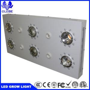 La alta calidad CREE COB 3590 Planta crecer la luz LED de alta potencia de 3000W de luz LED crecer
