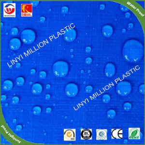 Tampa de toldo PE impermeável, tela azul para o mercado da África do Sul