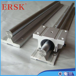 Lager Steel Linear Shaft mit Aluminum Support Rail