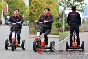 Peças Fácil Ebike económica Scooter Eléctrico Es5015 para venda