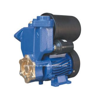 Surface de moulage de fer électrique automatique de la pression de ménage nettoyer la pompe à eau