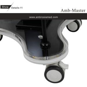 Matériel multifonctionnel de rajeunissement de la peau A8 (CE, ISO13485)