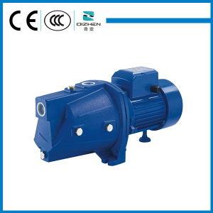 Hohe Perfomance 0.5HP JSW60 selbstansaugende Electirc Trinkwasser-Pumpe