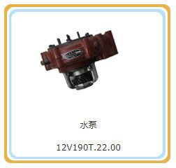 12V190t. 22.00水ポンプのShengdond Manufaturerの供給