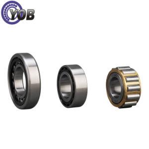 Rolamento de roletes cilíndricos Nu240-E-M1 para a tela de vibração