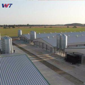Prefabricados H Bastidor de acero de sección de la construcción de la estructura de acero para el establo Villa almacén taller vivienda pollo hangar de aviones de la casa de acero
