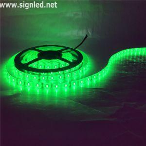 Striscia di vendita RGBW SMD5050 LED della fabbrica