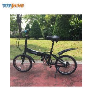 Facile trasportare e bici elettrica astuta piegante di viaggio di guida