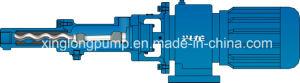 小型ねじポンプか高品質Pumps/PCポンプ