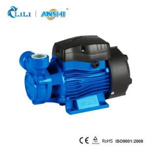Pomp van het Water van Anshi 0.5HP de Rand met Thermische Beschermer (LQ60)