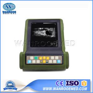 Ultrasuono animale medico a buon mercato portatile del veterinario della strumentazione dello scanner Usrku10