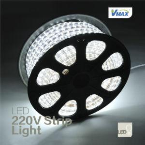 5050 Bright eccellente Waterproof 220V LED Strip Light