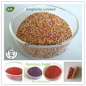 Additivo alimentare della premiscela della vitamina della pallina di nutrizione