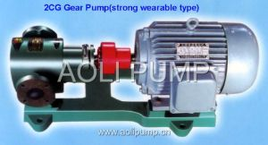 2CG Gear portabile Pump