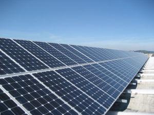 mono pannelli solari 195w