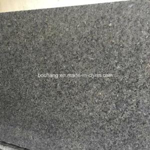 Het natuurlijke Blauwe Graniet van het Ijs voor de Plak van de Tegel van de Vloer