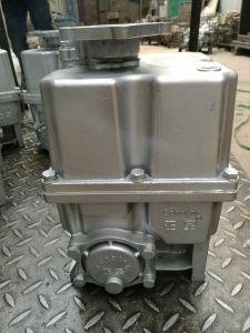 Pompa di combinazione per l'erogatore del combustibile