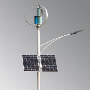 Vent génératrice éolienne Tubine 300W l'axe vertical de 2 ans de garantie à vie de 20 ans pour l'éclairage du moniteur système Wind-Solar