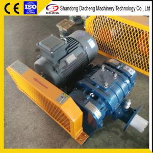 Ventilatore senza olio industriale delle radici Dsr80 per acque luride