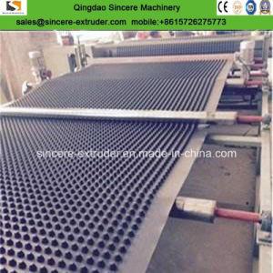 Le PEHD Composite de drainage de cavité Conseil Ligne d'extrusion pour la stabilisation du sol