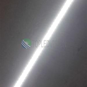 Alto indicatore luminoso di striscia flessibile di luminosità 240LEDs/M LED con qualità SMD2835