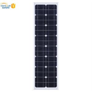 1つのLEDの太陽街灯30Wの熱い販売の動きセンサーすべて
